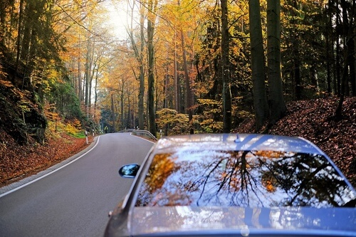 Your Roadmap for Proper Fall Car Care with Collinsville Auto Repair in Canton, CT; image of car driving in the woods during autumn with sun creeping through trees